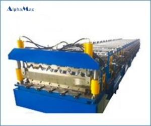 Double roof shingle molding line cover